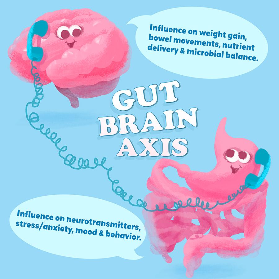 brain-gut-01