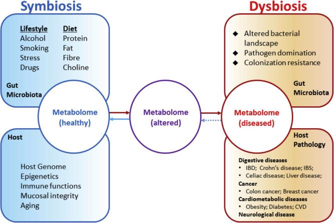 metabolome small.jpg
